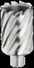 HSS кольцевые фрезы длиной 100 мм. Размеры: Ø 18 - Ø 100 мм. Хвостовик Weldon